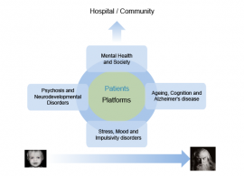 Mental Health Research - Themes
